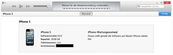 iPhone 5 Wiederherstellung auf iOS 6.1